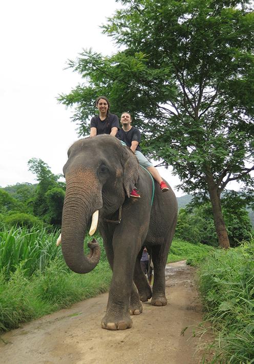 woody_elephant_chiang_mai