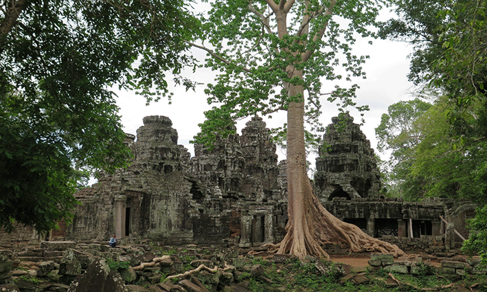 La naturaleza se abre camino en el templo de Banteay Kdei